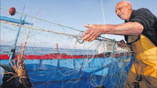 Pêcheurs et Etat : entente cordiale sur la langouste