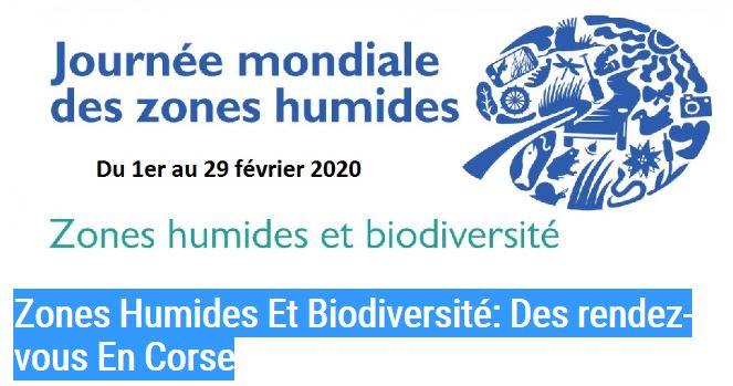 Zones Humides Et Biodiversité: Des rendez-vous En Corse