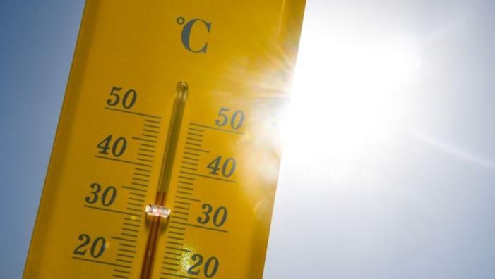 Météo : un hiver très doux et des records de chaleur battus en Corse