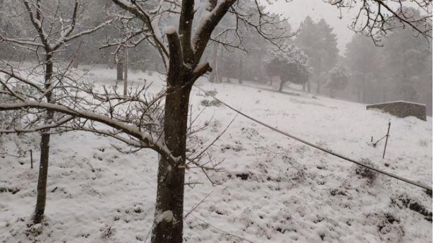 Météo : la neige au rendez-vous en Corse