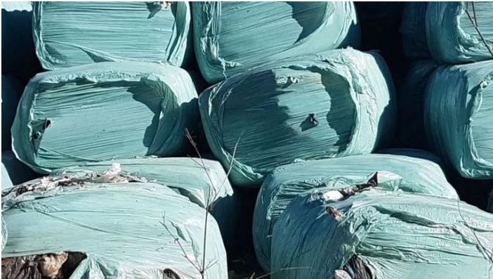 Gestion des déchets en Corse : la crise dans la crise