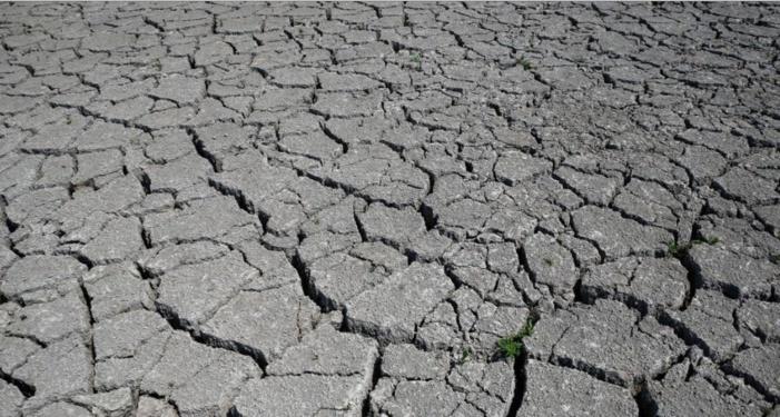 Météo : la Haute-Corse pourrait être menacée par la sécheresse cet été