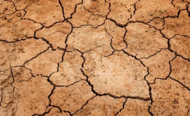 Sécheresse en Plaine Orientale : un nouvel appel à projets pour le financement de systèmes de pilotage de l'irrigation