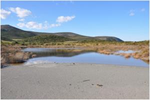 Site Natura 2000 FR 9400588  « Cap Corse Nord et îles Finocchiarola, Giraglia, Capense »