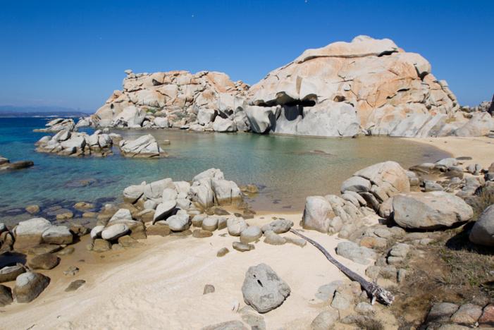 L'île Lavezzu abrite de nombreuses espèces endémiques à l'abri de ses chaos rocheux. (photo : O. Bonnenfant/OEC)
