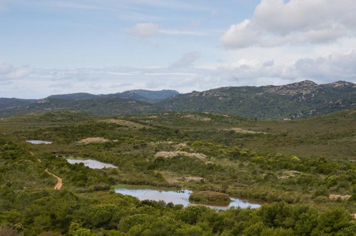 La Réserve Naturelle des Tre Padule de Suartone préserve quatre mares temporaires et leurs bassins versants. (photo : O. Bonnenfant/OEC)