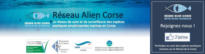 Sous-marin Comex
