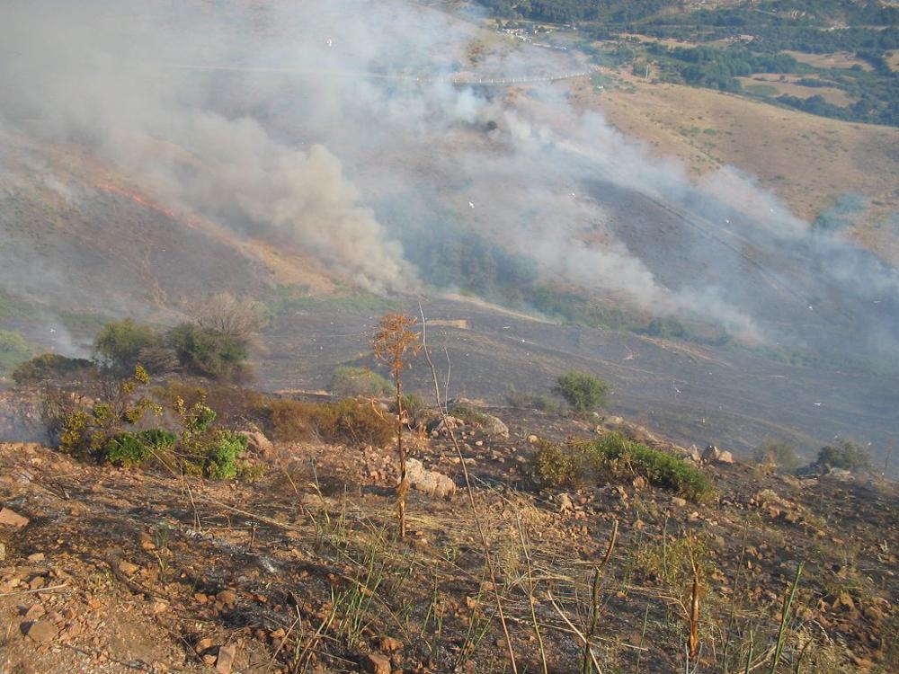 Incendie dans la région de Lava en 2015