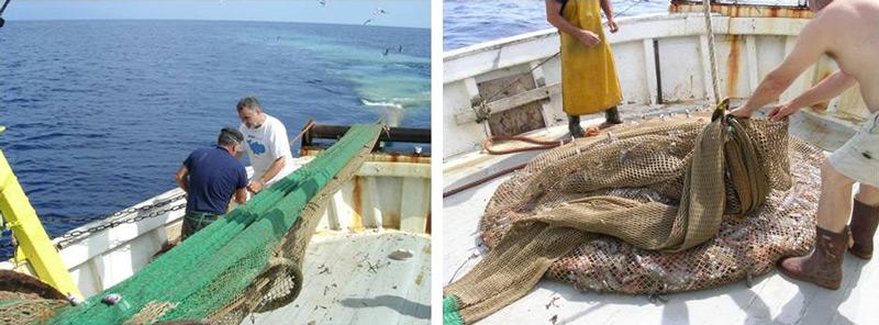 Pêche au chalut © CRPMEM de Corse
