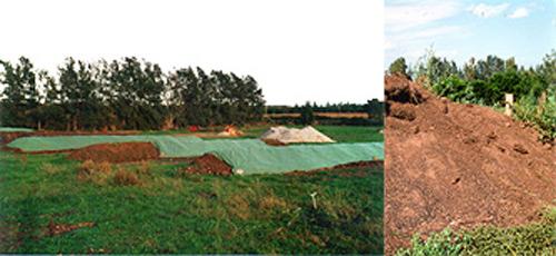 Les andains bâchés - Compost final