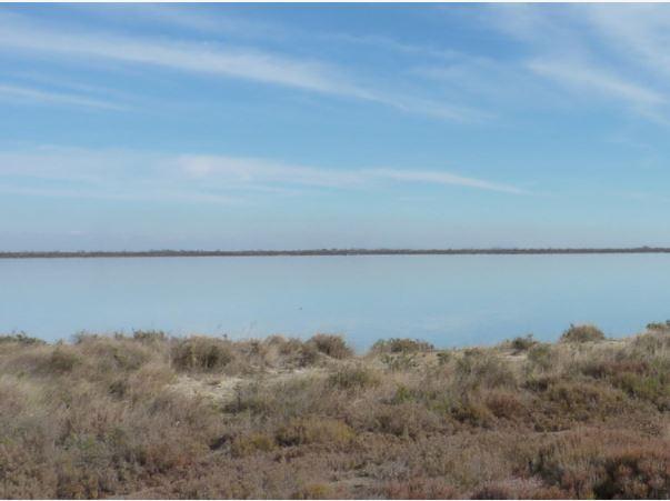 """Journée mondiale des zones humides 2019 """"zones humides et changement climatique"""", du 1er au 28 Février"""