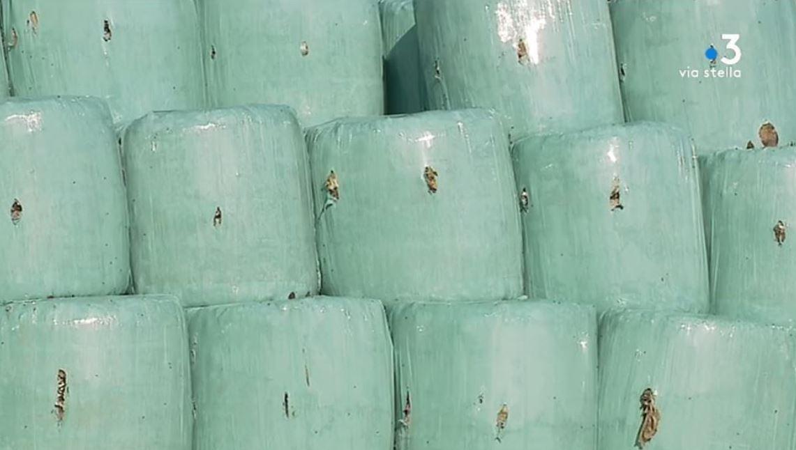 Corse : la gestion des déchets va coûter cher aux intercommunalités