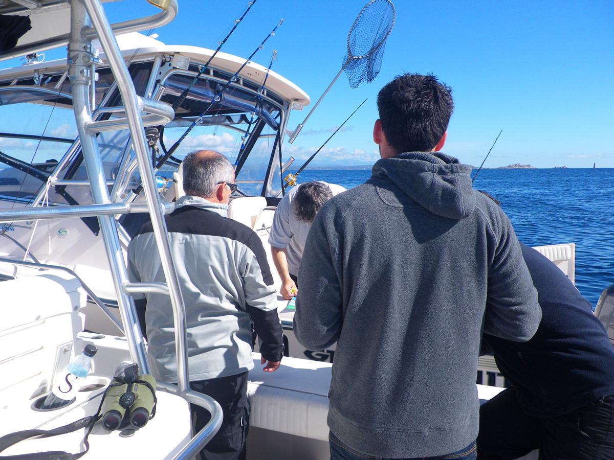 Mise en place d'une télédéclaration pour la pêche maritime de loisir dans la RNBB
