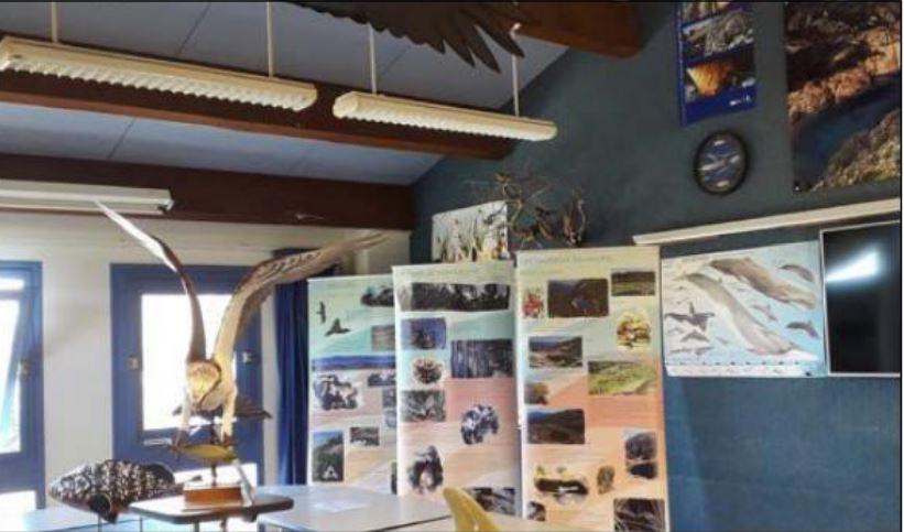 GALERIA Une exposition sur l'environnement durant tout l'été à la Casa marina
