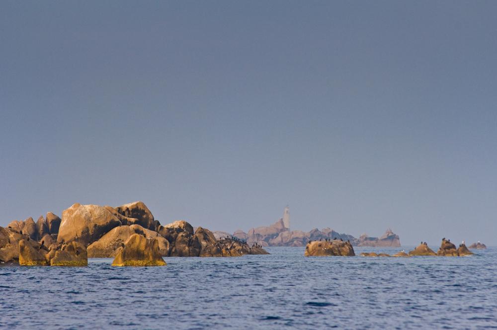 La zone de non prélèvement des îlots des Moines marque la limite ouest de la Réserve Naturelle des Bouches de Bonifacio. (photo : O. Bonnenfant/OEC)