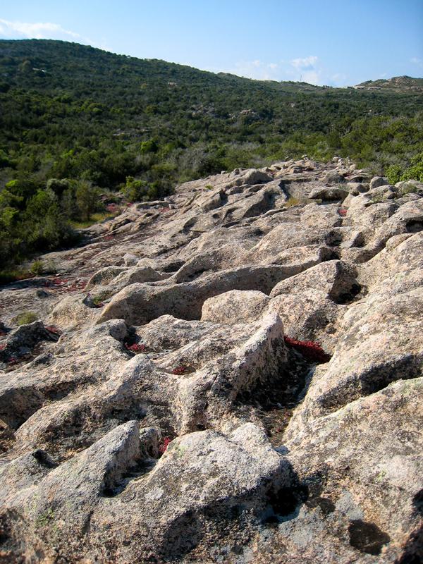 Le pseudokarst, objet géologique remarquable de la Réserve Naturelle des Tre Padule de Suartone. (photo : M-L. Pozzo di Borgo/OEC)