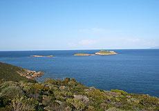 85 : l'isule Finuchjarola