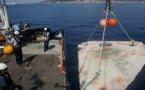 Maison de poissons : trois récifs artificiels dans le golfe d'Ajaccio