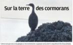 Sur la terre des cormorans