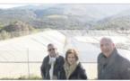 Rogliano, Meria et Tomino la pénurie d'eau avant l'été