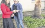Plantes endémiques et projet pédagogique pour le collège
