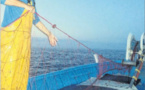 La recherche scientifique pour une gestion durable de la pêche