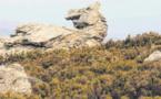 Le Chemin des deux rives pour respirer le Cap autrement