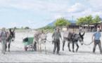 """L'entretien durable des plages en mode """"sumerinu"""""""