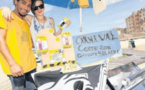 L'association Stelle Turchine mise sur l'énergie solaire