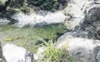 Dépolluer la rivière de Figarella coûterait 369 000 euros !
