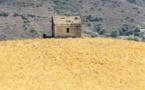 La Corse épicentre du seisme climatique