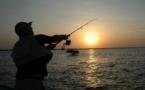 Déclaration de pêche de loisir 2019 au sein de la réserve Naturelle des Bouches de Bonifacio