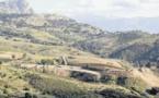 Aménagements et sécurisation sur la dangereuse route de Calvi