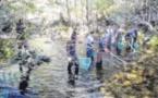 Pêches annuelles d'inventaire au profit du milieu piscicole