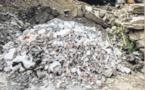 La pollution à Tragone dans le viseur des écologistes