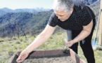 À l'ortu : L'heure de planter ses racines