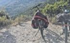 Les vélos électriques mis à la location cet automne