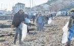 Un compromis pour nettoyer les posidonies sur les plages