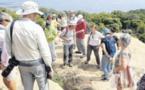 Balade en terres de Roccapina avec le botaniste Stéphane Rogliano