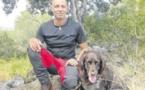 Un chien de sang pour retrouver les sangliers blessés à la chasse