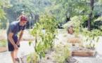 La permaculture, cet art de cultiver qui fleurit au Misincu