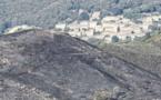 Dix hectares brûlent à Castellu di Rustinu