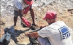 Pollution maritime à bonifacio : l'OEC tire la sonnette d'alarme