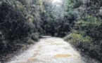 La route du Cuscionu entre dans le domaine privé
