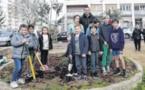 Pà Aiacciu lance l'opération Cità Verdi dans les quartiers