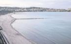 La plage a retrouvé son charme naturel dans la pinède de Calvi