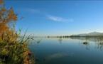 Journées mondiales des zones humides  Plusieurs rendez-vous en février dans toute la Corse