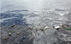 La Méditerranée est la mer la plus polluée d'Europe avec plus de 200 déchets par kilomètre carré : une étude le révèle