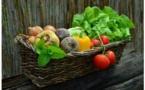 Le bio pourrait-il nourrir les Corses ?