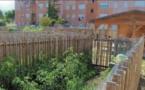 GHISONACCIA Les jardins partagés fleurissent